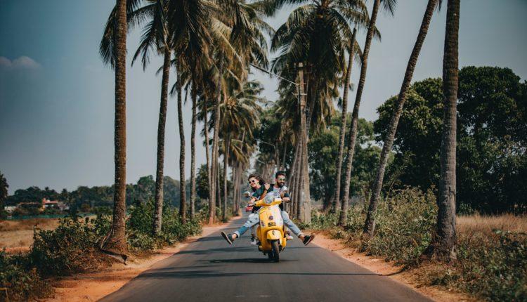 coconut-trees-couple-daylight-2174656