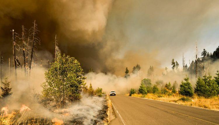 pożar Biebrzańskiego Parku Narodowego drony