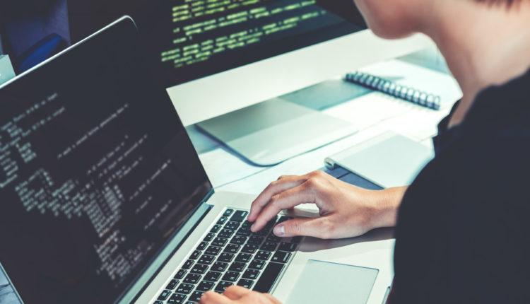 programowanie IT programiści